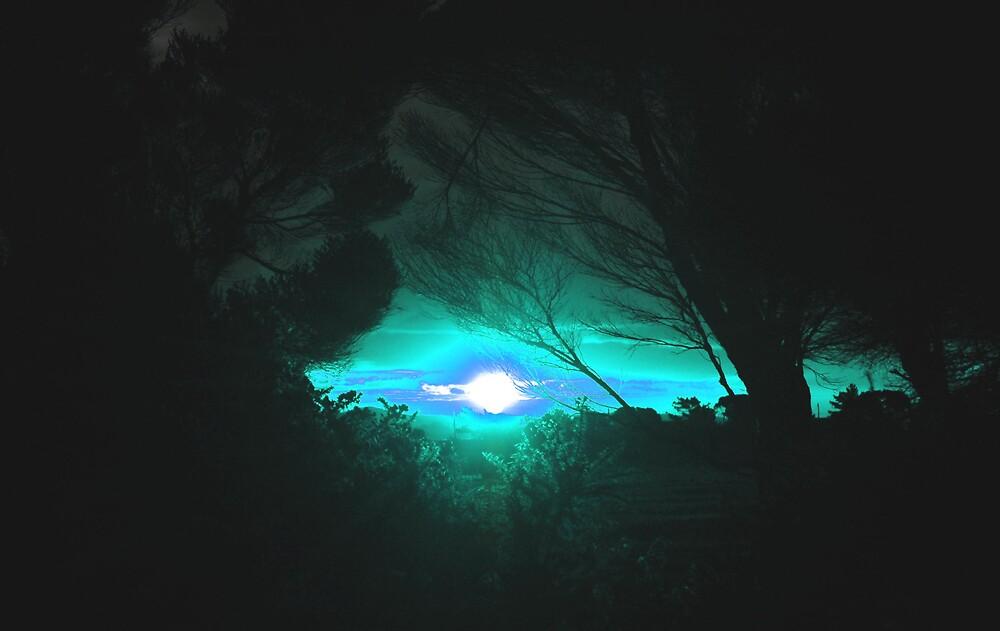 Bright by DeeCeeDee
