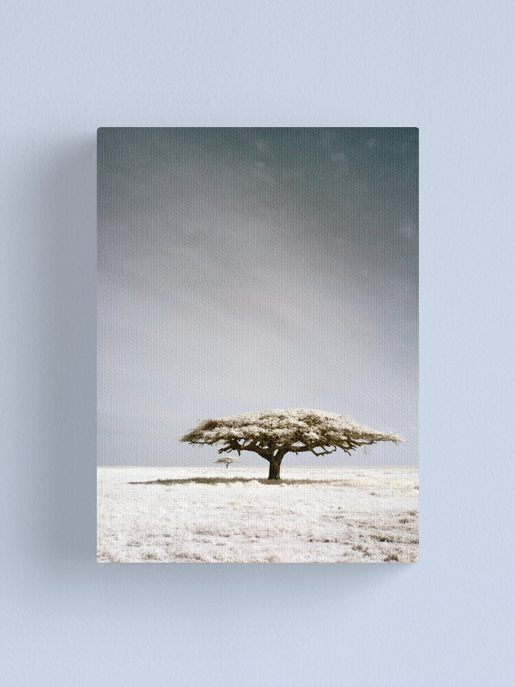 Alternate view of Serengeti dreaming Canvas Print