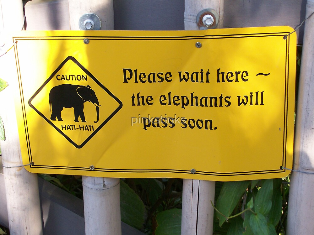 Elephant stampeed  by pinkstinks