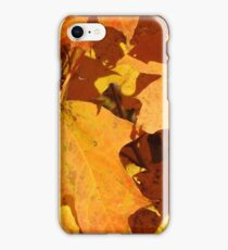 Autumn Leaves in Tennessee iPhone Case/Skin