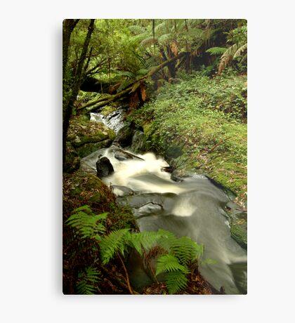 Rushing Waters,Triplet Falls,Otway's Metal Print