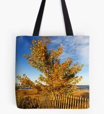 Sheldon Marsh - Autumn Beach Tote Bag