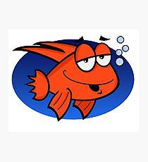 Crazy Looking Cartoon Goldfish Photographic Print