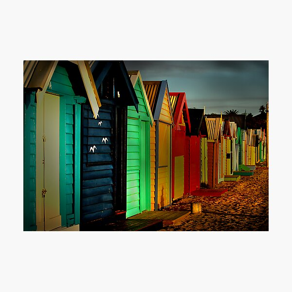 Brighton Beach Houses Photographic Print