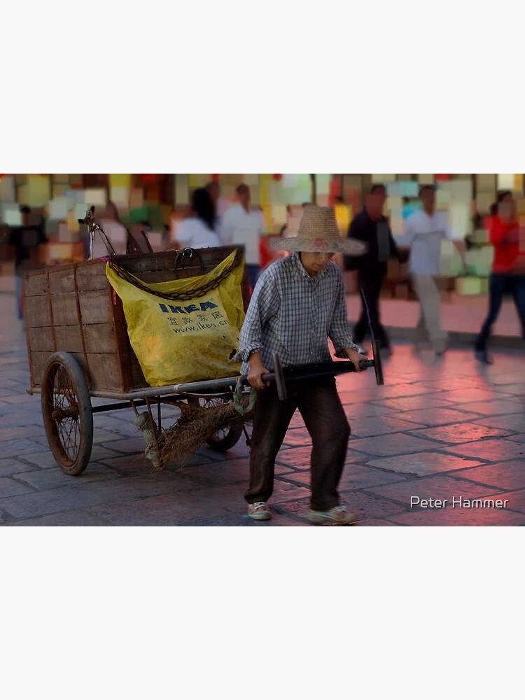 The Ikea Cart by PeterH