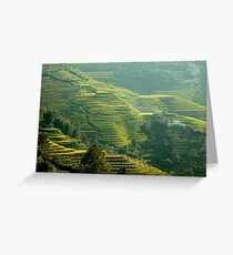 Terraced Hillsides Greeting Card