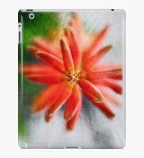 Green and Orange iPad Case/Skin