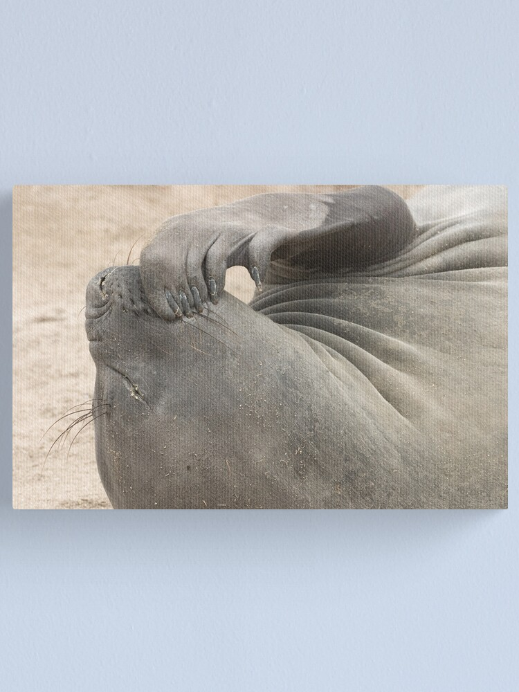 Alternate view of Deep Thought Canvas Print