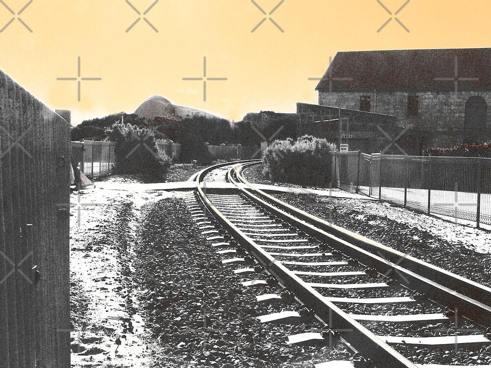 Timeless Tracks by Sandra Chung