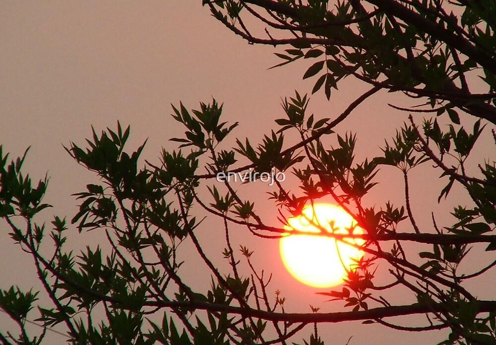 Sun setting by Joanne Byron
