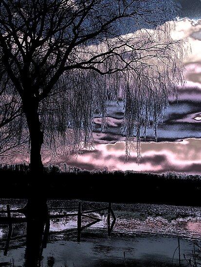 Metalic Sunset by InfinityRain