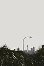 skyline & lamp post by Yuval Fogelson