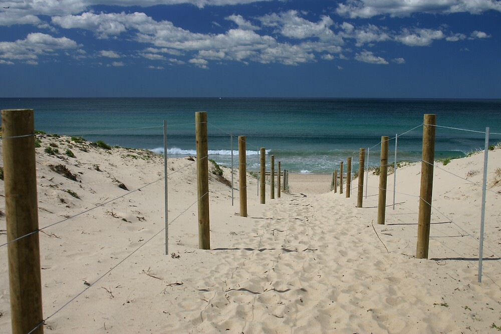 cronulla by Tricia  Fox