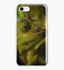 Funny pair of the chameleons. Amusing animal glance iPhone Case/Skin