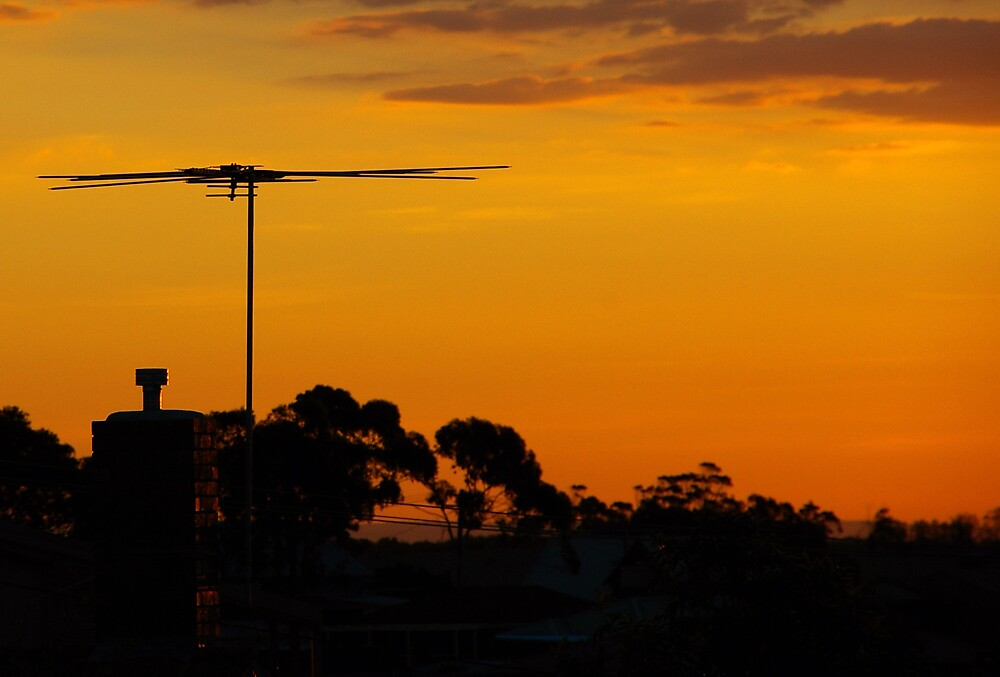 Summer Sunset by Leigh  Parkin