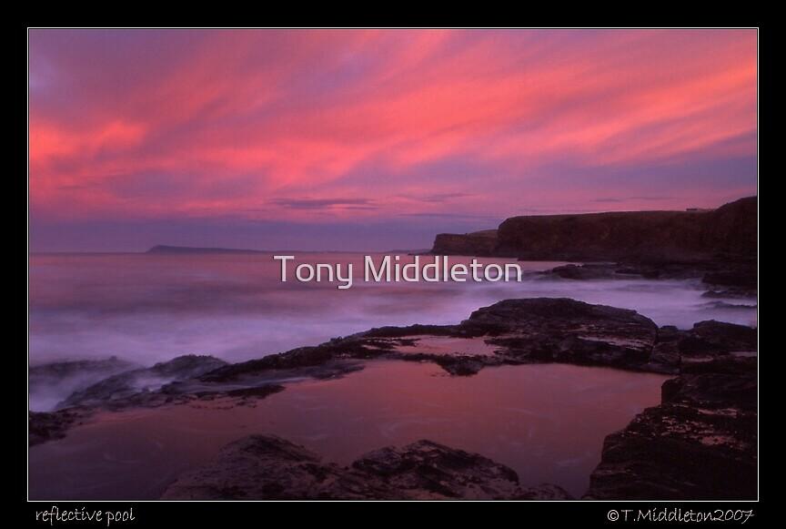 reflective pool  by Tony Middleton
