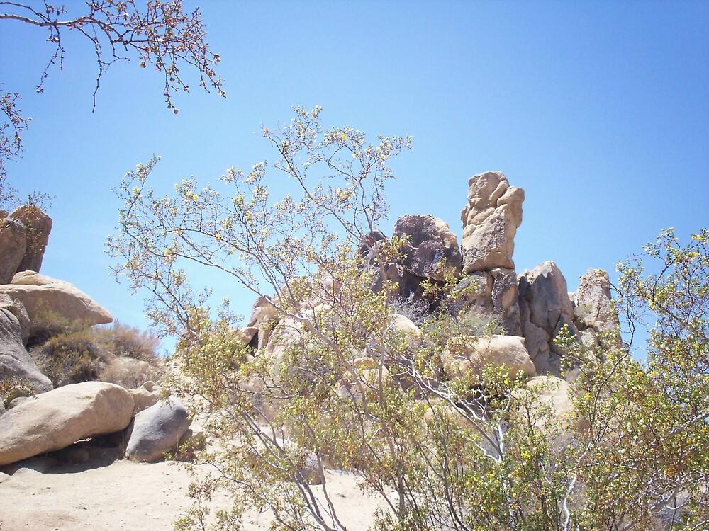 Desert Rock by Blooeyes34
