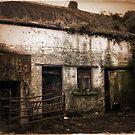 Old Rundown Irish Farm by Donny Ocleirgh