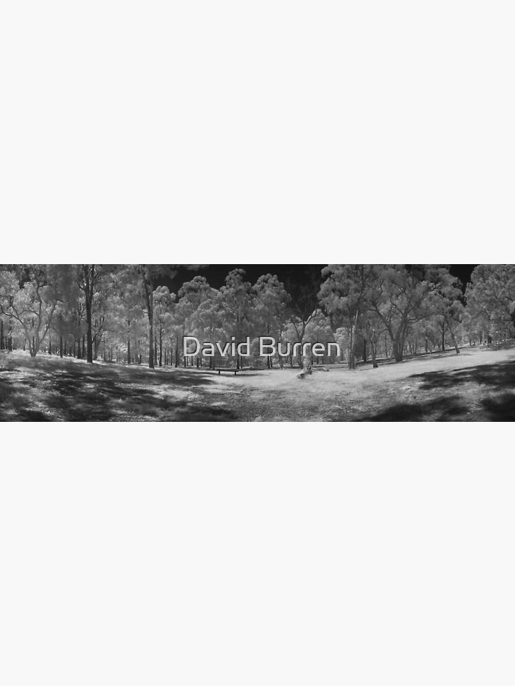 Wattle Park in infrared by DavidBurren