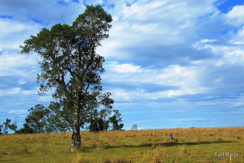 Nammoona Landscape View by Karl Borja