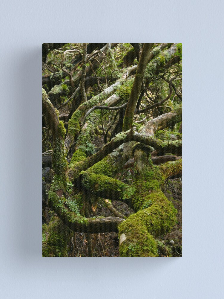 Alternate view of Forest jumble Canvas Print
