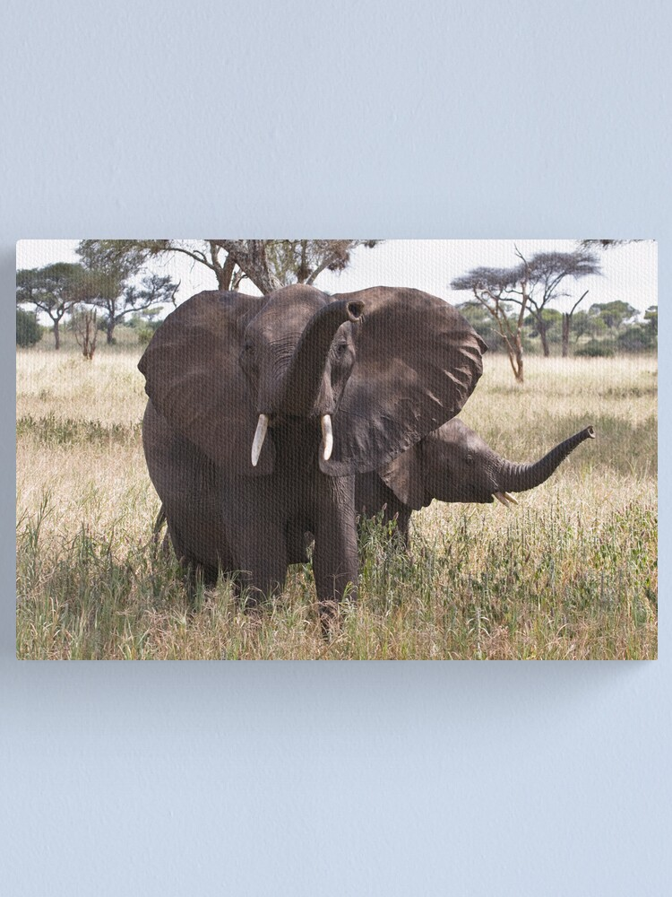 Alternate view of Trunk waving Canvas Print