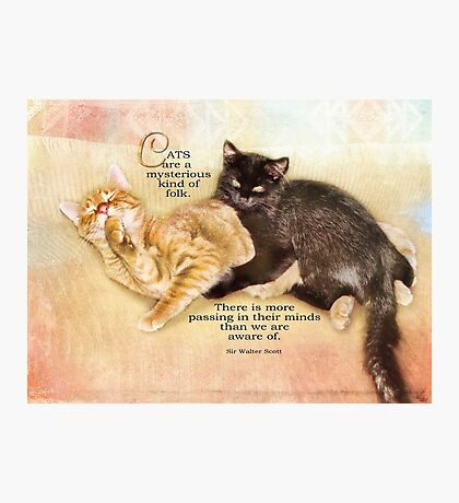 mysterious cats-inspirational Photographic Print