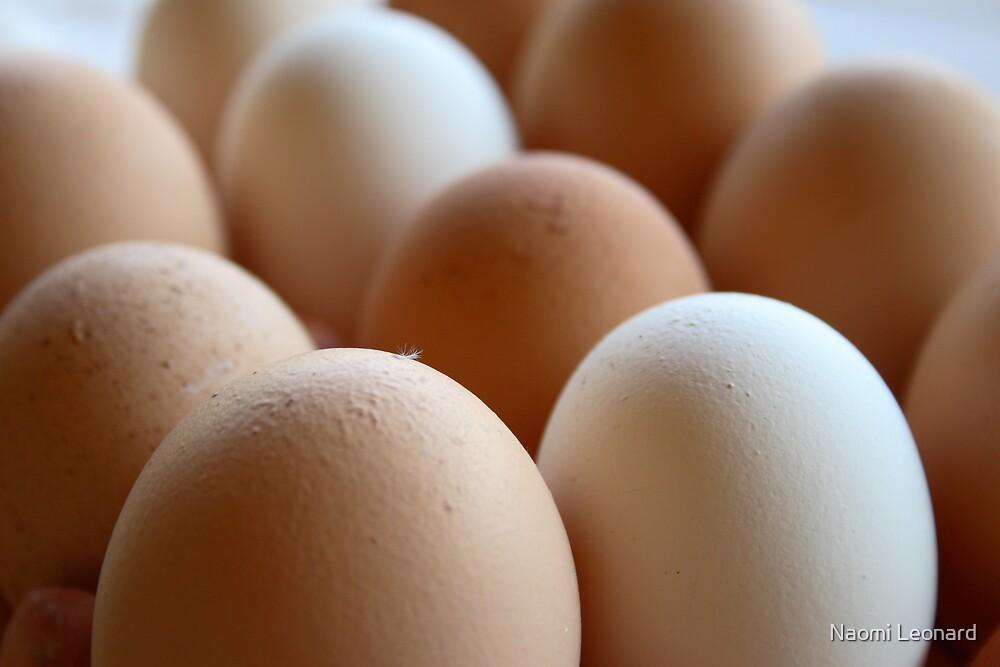Eggs by Naomi Leonard