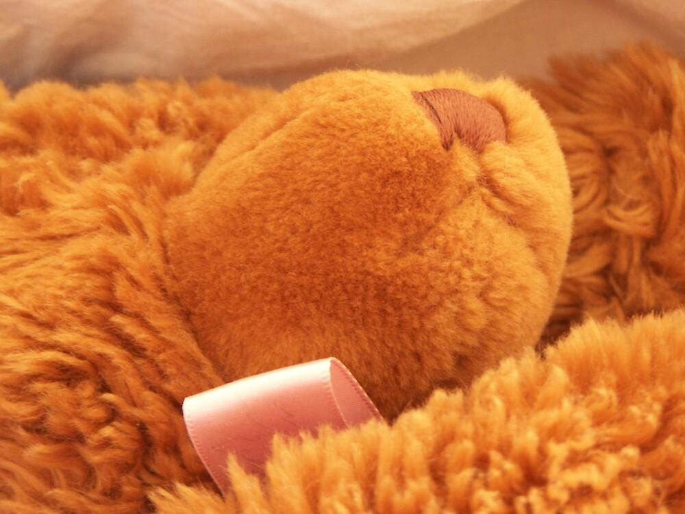 Be my Teddy Bear by Princessbren2006