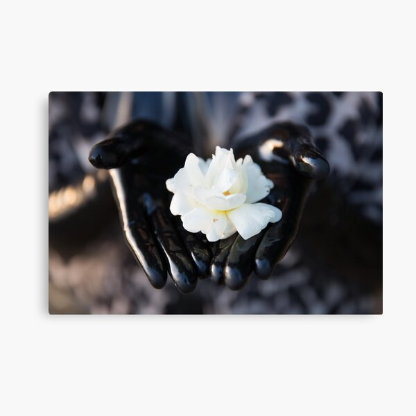 Project L: Shiny and a flower Canvas Print