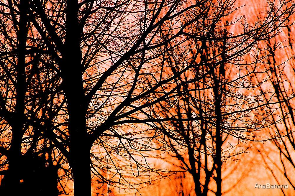 tree by AnaBanana