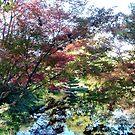 In The Gardens by Ellen Woods