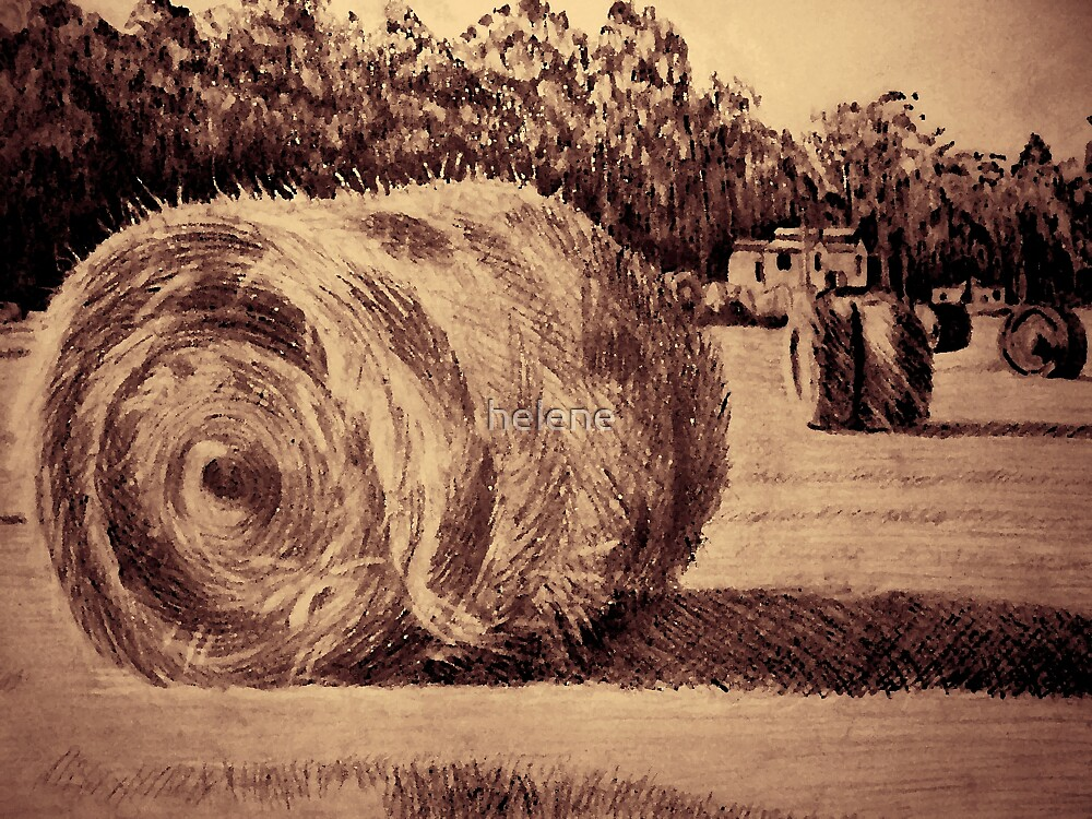 Haybales  by helene