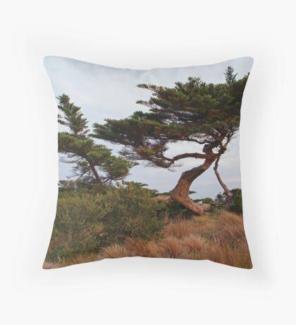Coastal Forces,Ocean Grove Throw Pillow