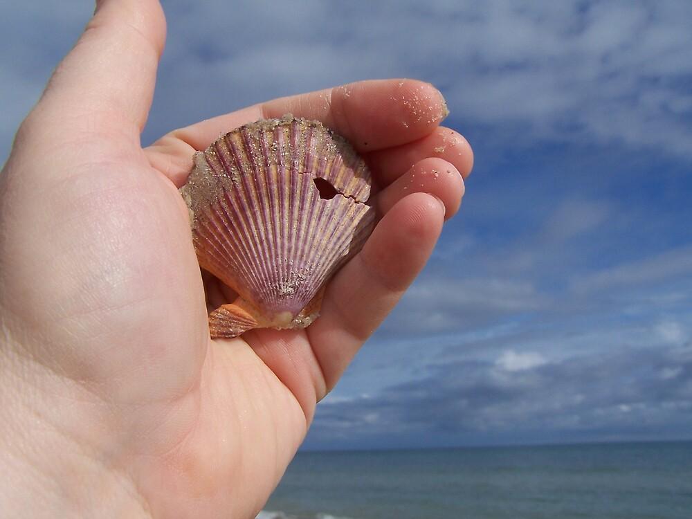 shell by Princessbren2006