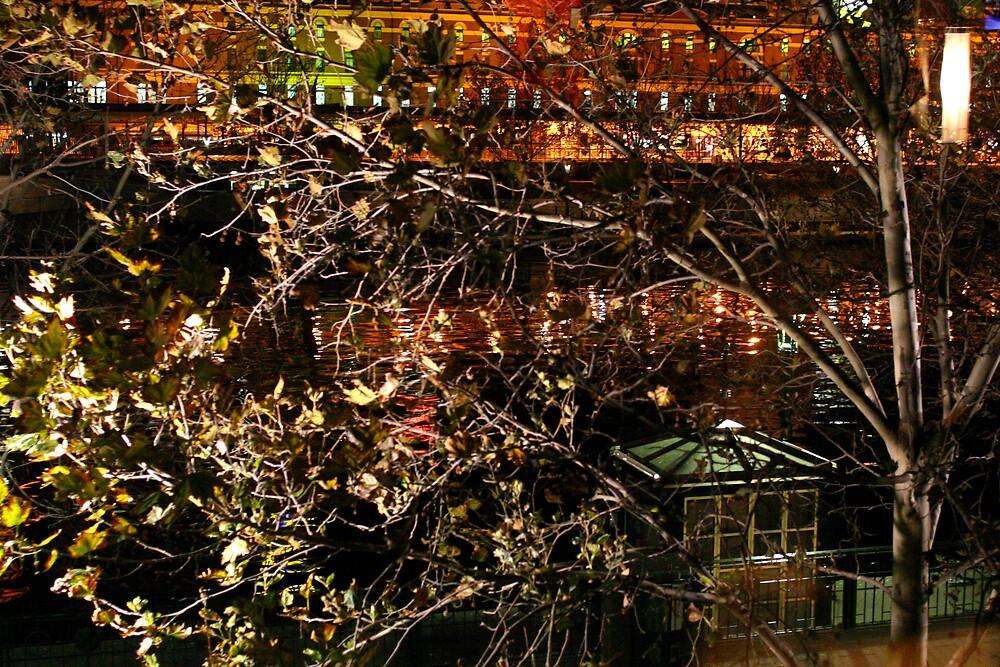 Flinders Street through trees by rick strodder