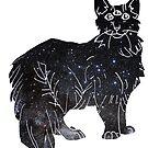 starfield psychic cat [1] by HiddenStash