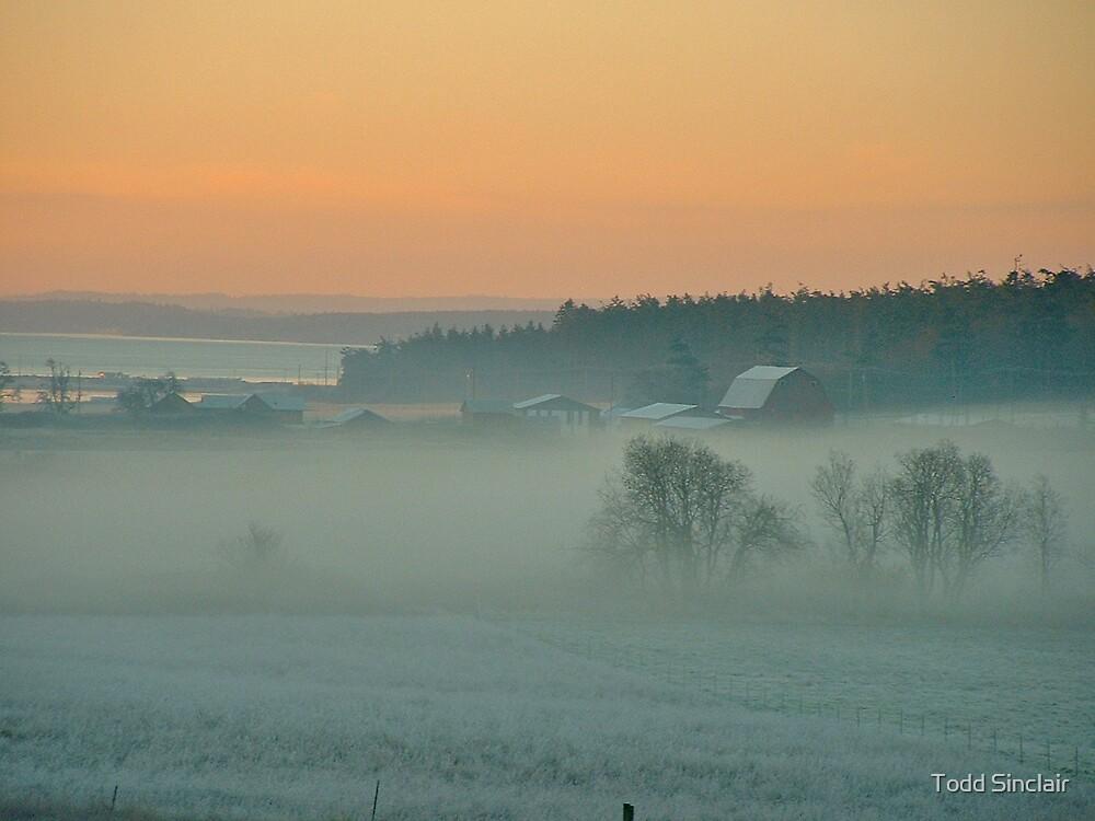 Summer Fog at Dawn by Todd Sinclair