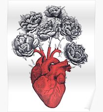 Heart with peonies Poster