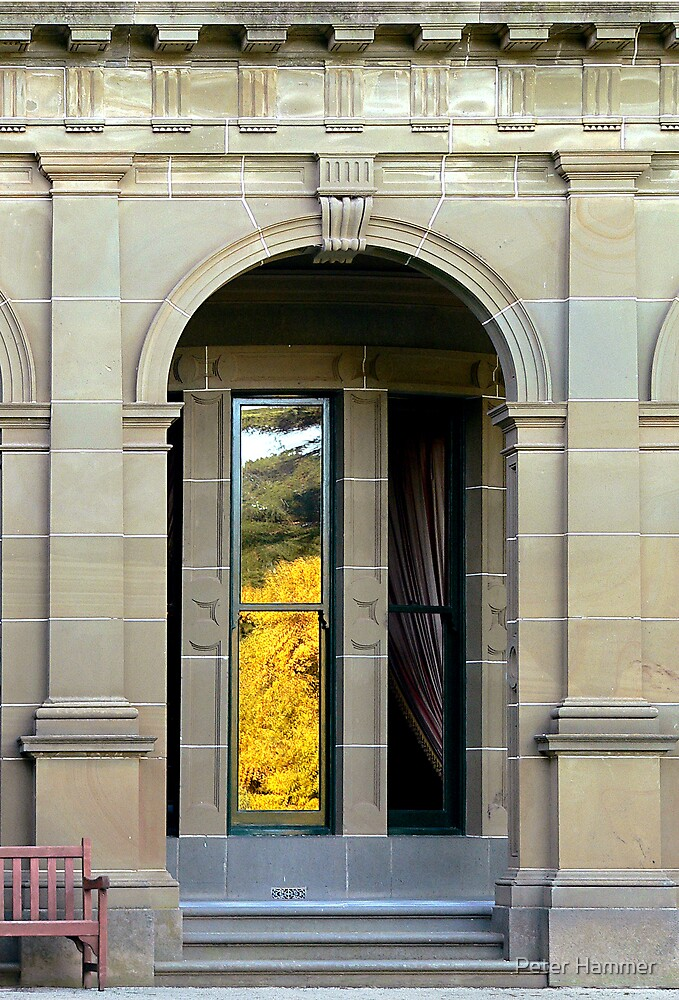 Side door  by Peter Hammer