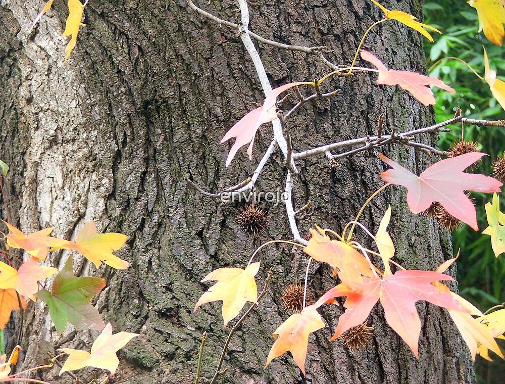 Pastel Leaves by envirojo
