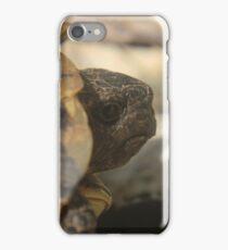 The European tortoise, an increasingly threatened species  iPhone Case/Skin