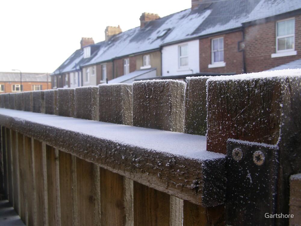 morning frost by Gartshore