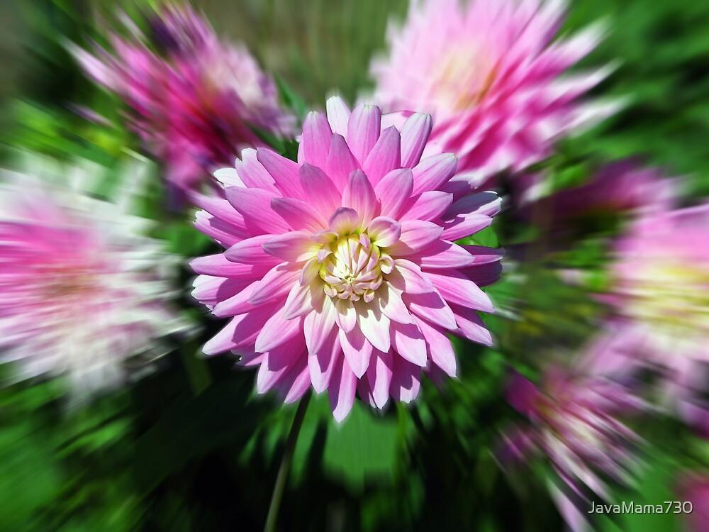 Flower Power by JavaMama730
