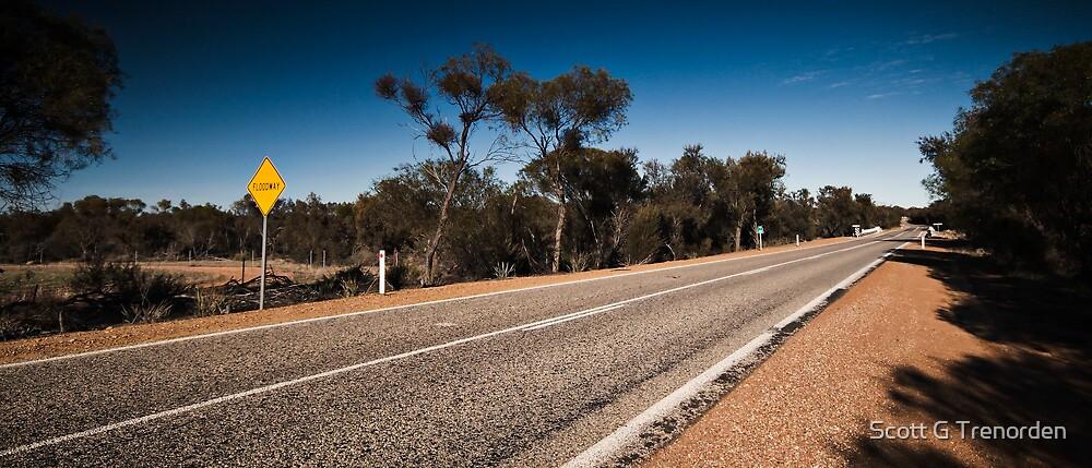 Road to Wyalkatchem: Part 3 by Scott G Trenorden