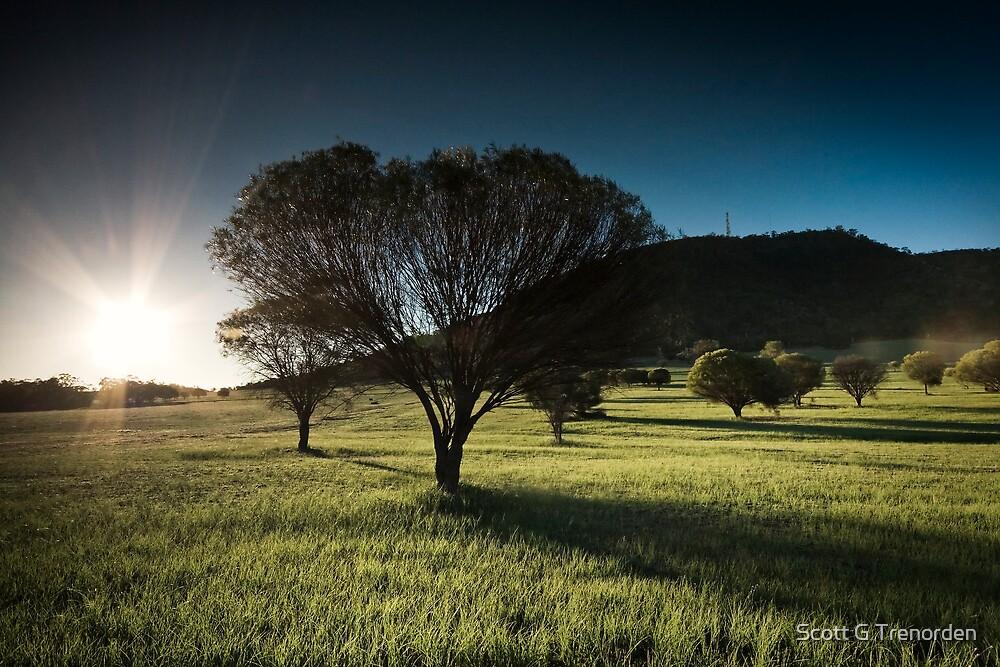 York Sunset Study: #1 by Scott G Trenorden