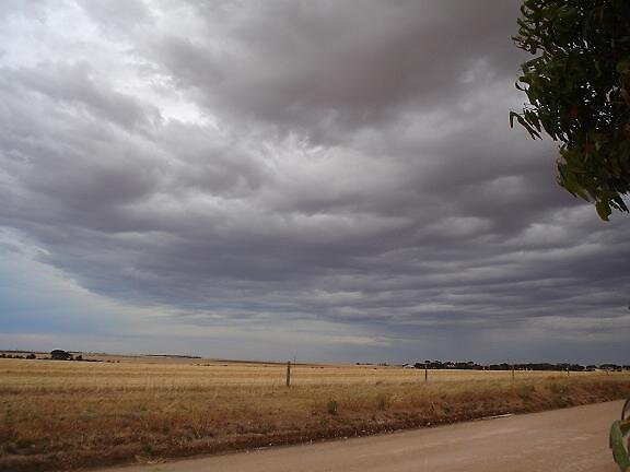 thunder rollss by elizabethrose05