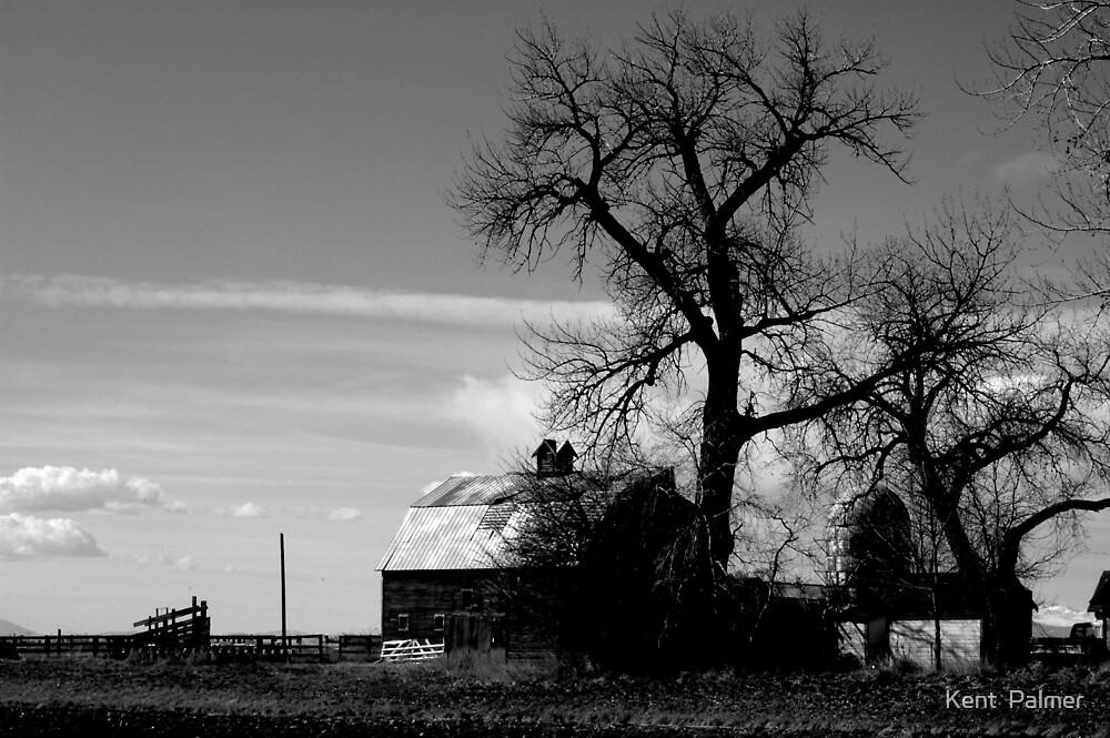 Taint Kansas by Kent  Palmer