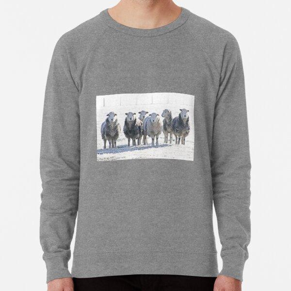 Herdwick Sheep Lightweight Sweatshirt