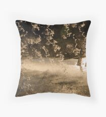 Spash Throw Pillow